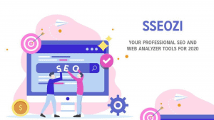 SSEOZI Lifetime Deal Techlofy