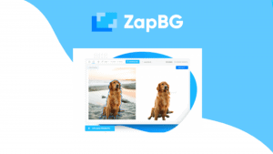 ZapBG Lifetime Deal