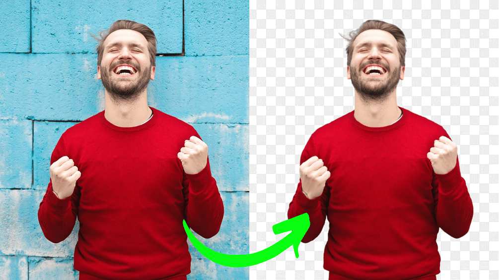 Remove the Background of Any Image in Seconds using AI with BackgroundCut 2