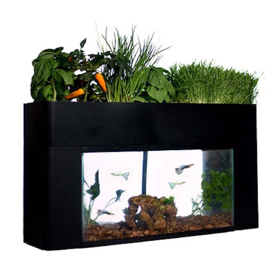 Aquasproutsgarden